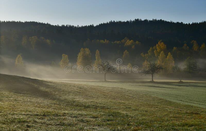 Blick auf die Herbstlandschaft im Morgennebel, Südböhmen stockfoto
