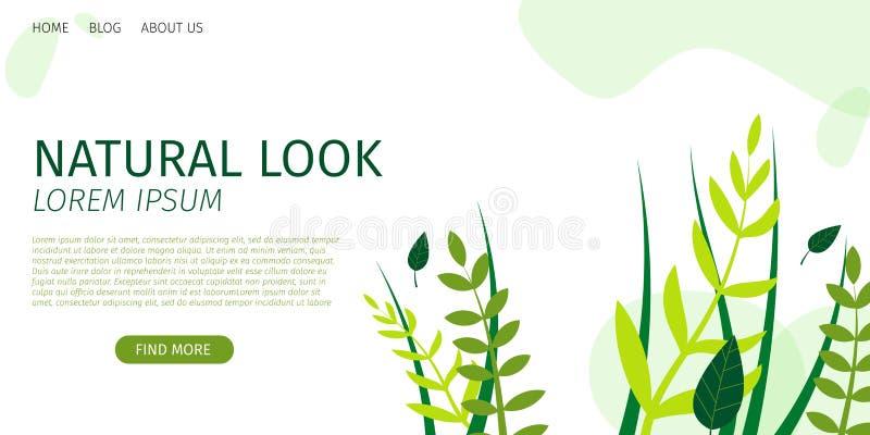 Blick och skönhet för horisontalplant baner naturlig stock illustrationer