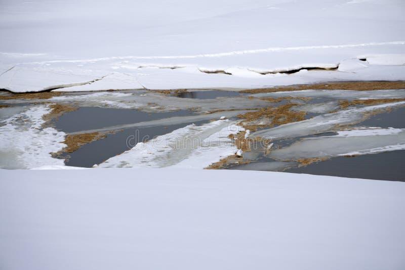 Blidvädret på den tidiga våren för dammet och isen smälter naturen arkivfoton