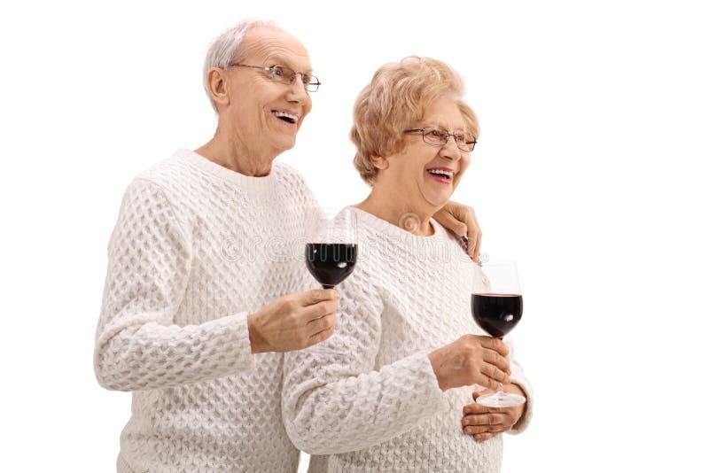 Blij bejaard paar met glazen wijn stock afbeelding