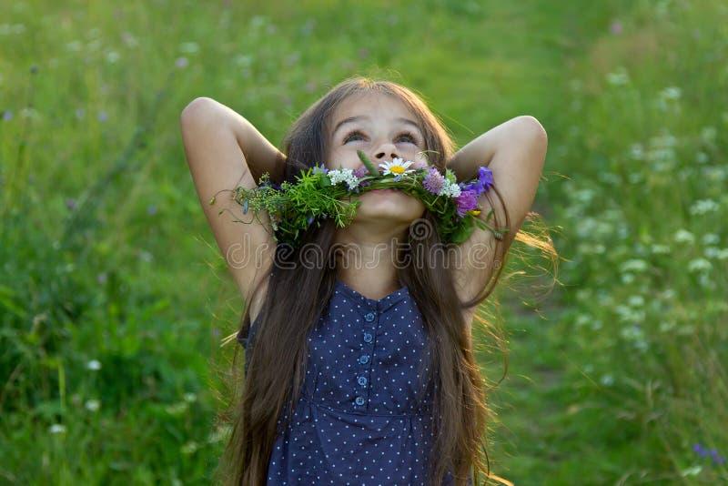 Blij leuk meisje op de de zomerweide royalty-vrije stock afbeelding