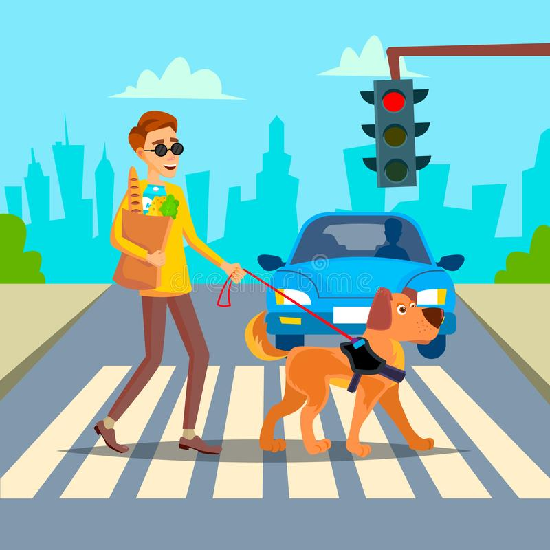 Blind Man Vector. Young Person With Pet Dog Helping Companion. Disability Socialization Concept. Blind Person And Guide royalty free illustration