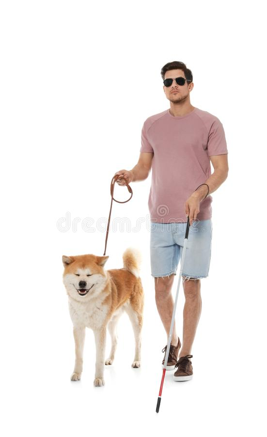 Blind man with walking stick and dog on leash against white. Background stock image