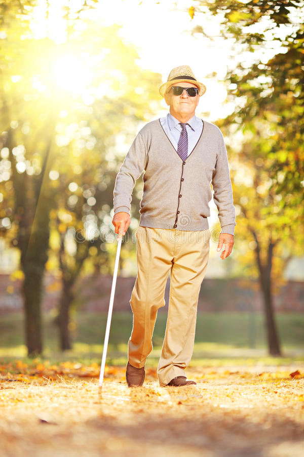 Blind mature man holding a stick and walking in a park stock photo