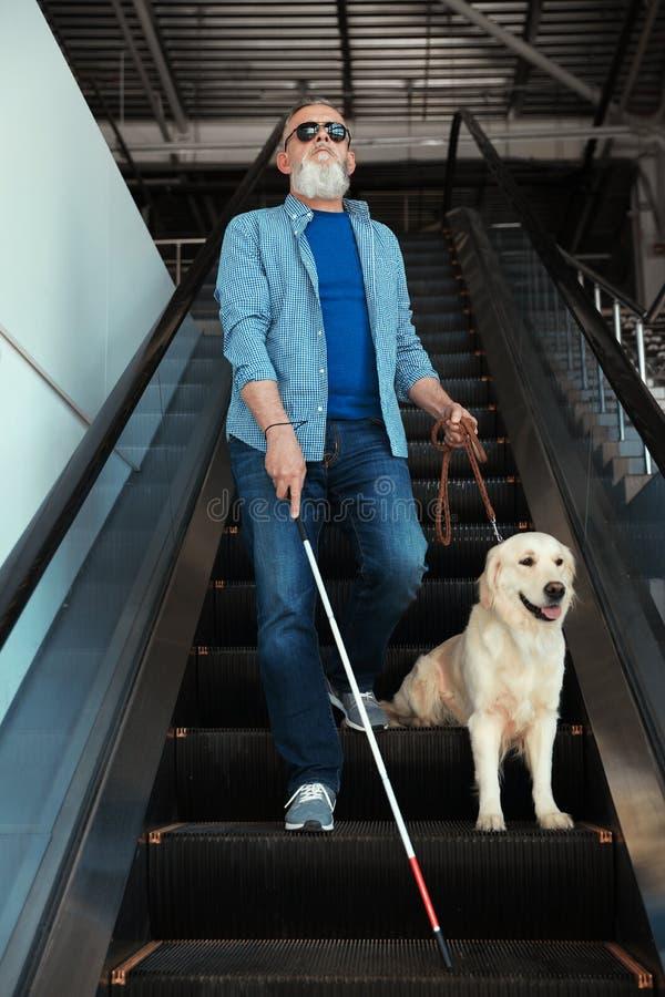 Blind person med den långa rotting- och handbokhunden på rulltrappan royaltyfria bilder