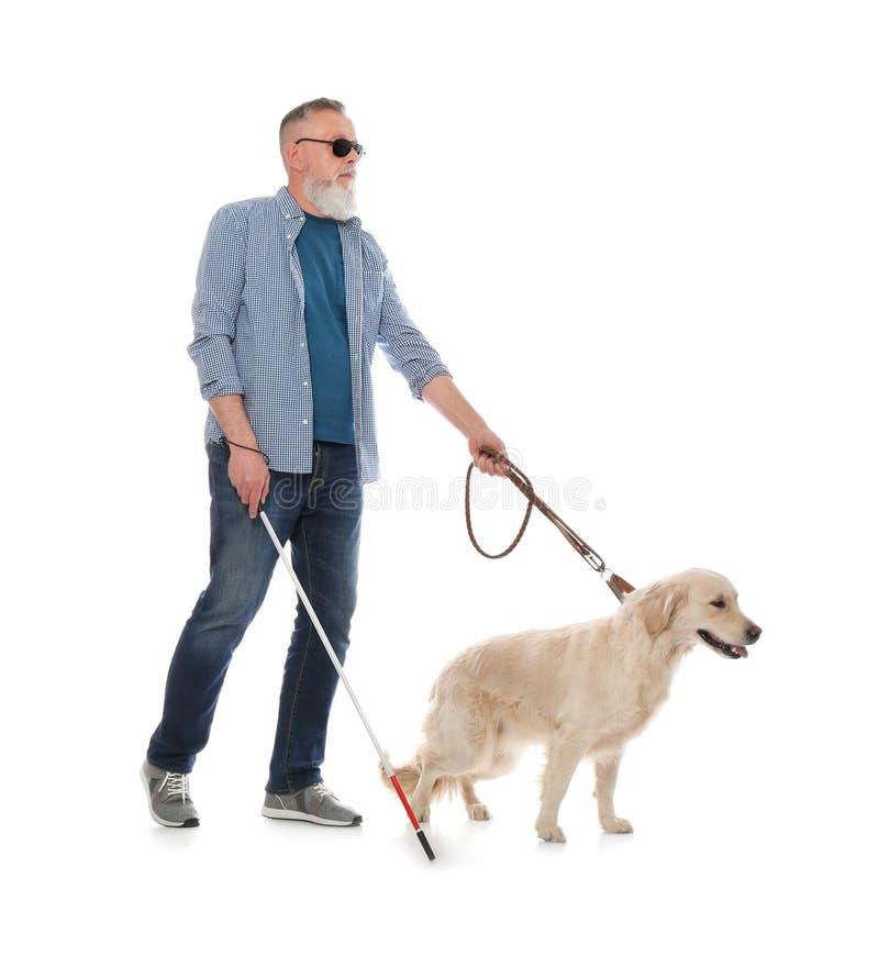Blind person med den l?nga rotting- och handbokhunden royaltyfri foto
