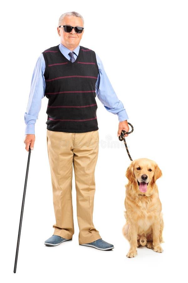 Blind person som rymmer en gå stick och en hund royaltyfri bild