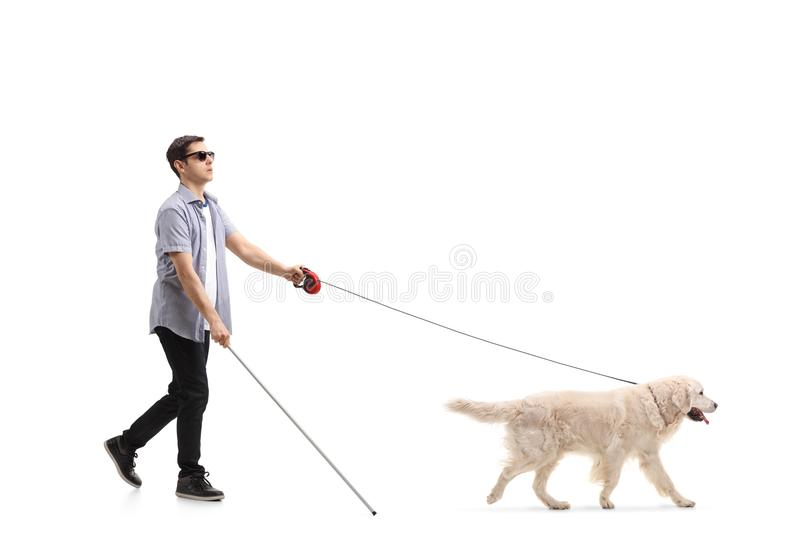 Blind young man walking with the help of a dog stock photos