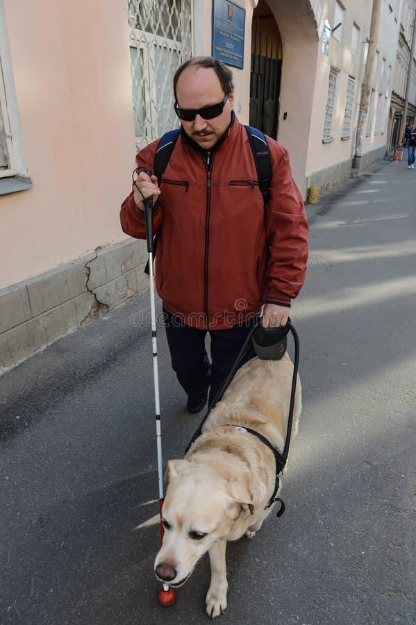 Blinde en gidshond stock afbeelding