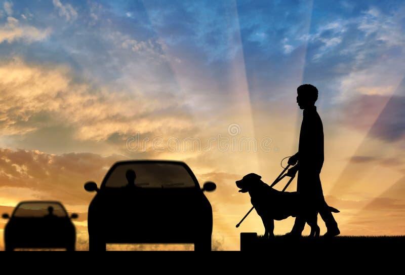 Blinde gehandicapte persoon met riet en hondzonsondergang van de gids de dwarsweg stock foto's
