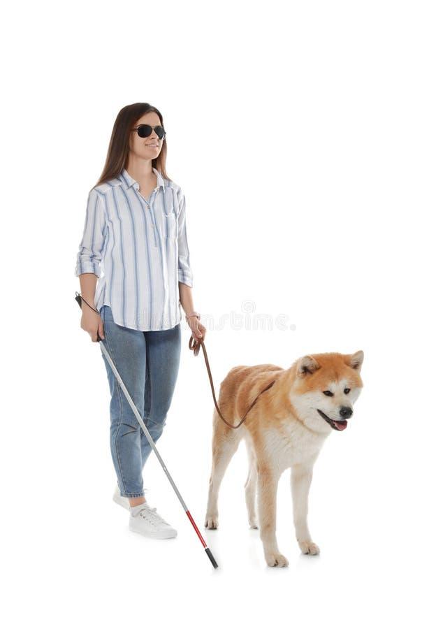 Blinde met wandelstok en hond op leiband royalty-vrije stock afbeeldingen