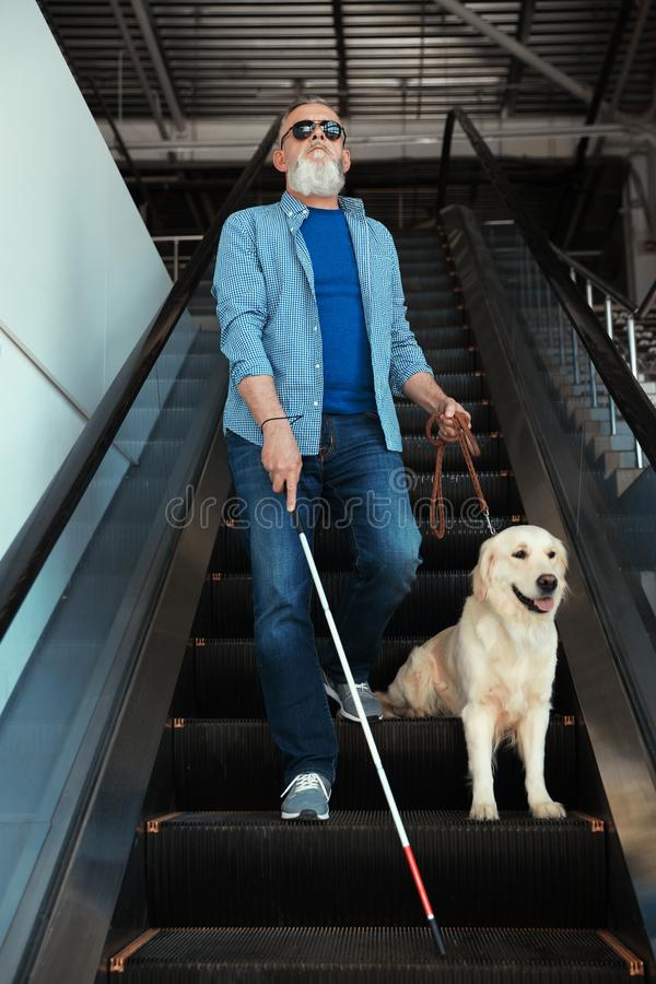 Blinde Person mit langem Stock und Blindenhund auf Rolltreppe lizenzfreie stockbilder