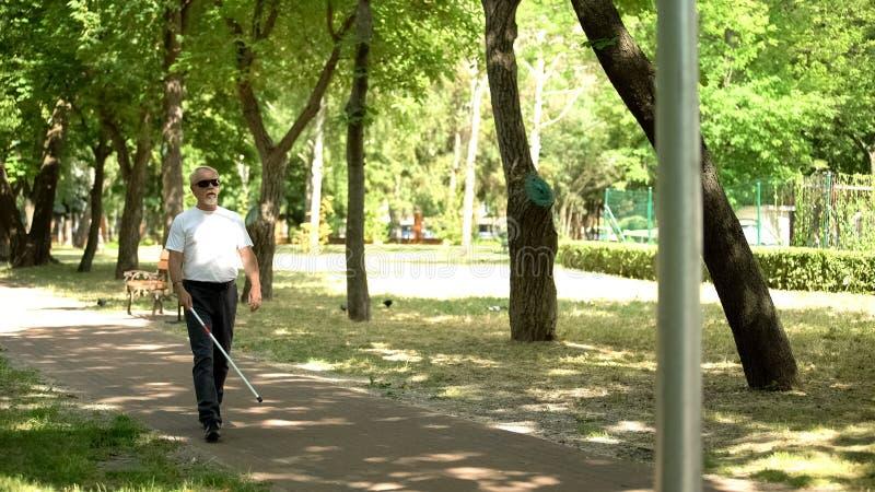 Blinder alter Mann, der Hindernisse mit weißem Rohrstock entdeckt und im Park unabhängig spaziert lizenzfreie stockfotos