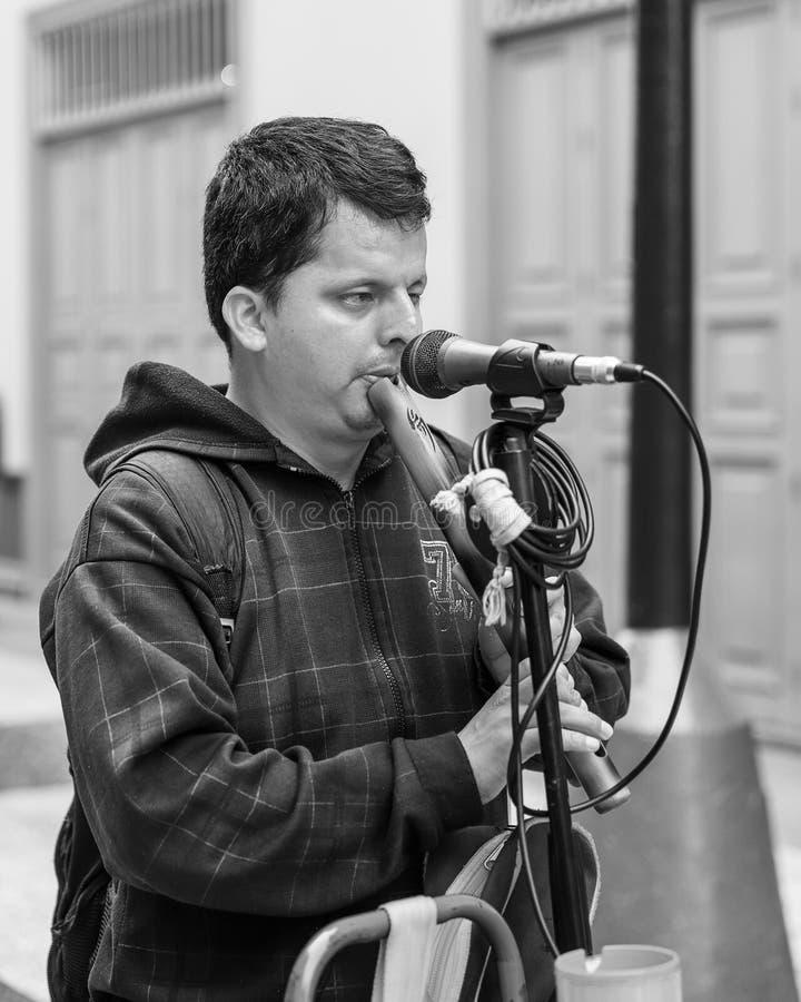 Blinder junger Mann, der eine Flöte auf der Straße von Lima, Peru spielt lizenzfreie stockfotografie