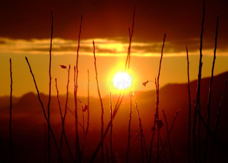 Blinding Sunrise royalty free stock photography