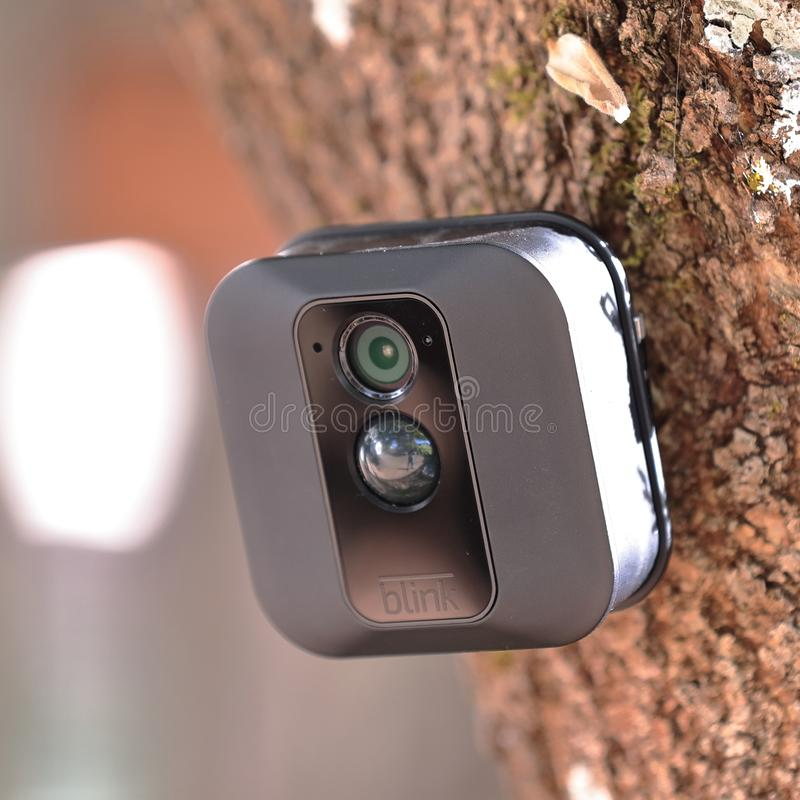 Blink XT Outdoor security camera on a trunk of a tree. Blink XT Outdoor wireless security camera on a trunk of a tree royalty free stock image