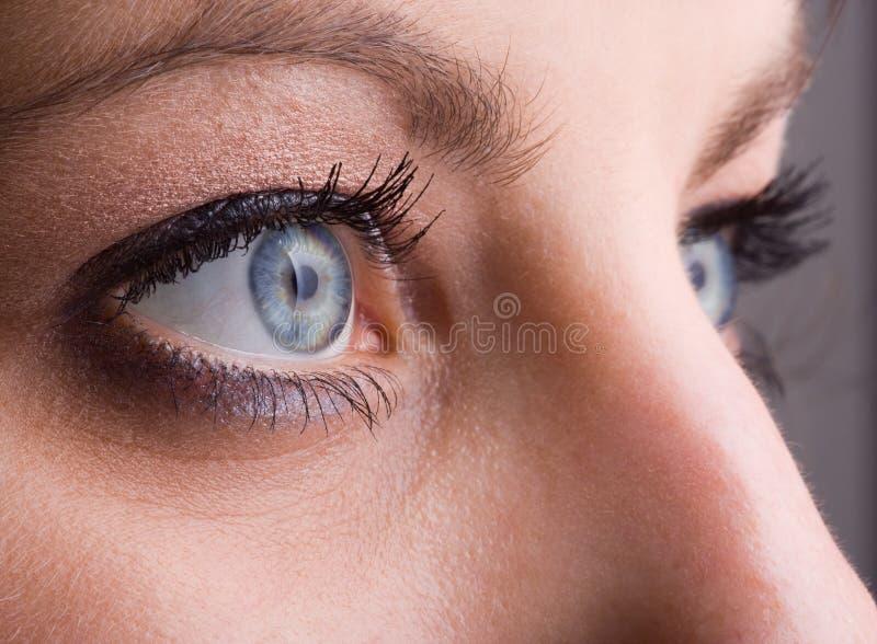 blisko blue eyes. zdjęcie stock
