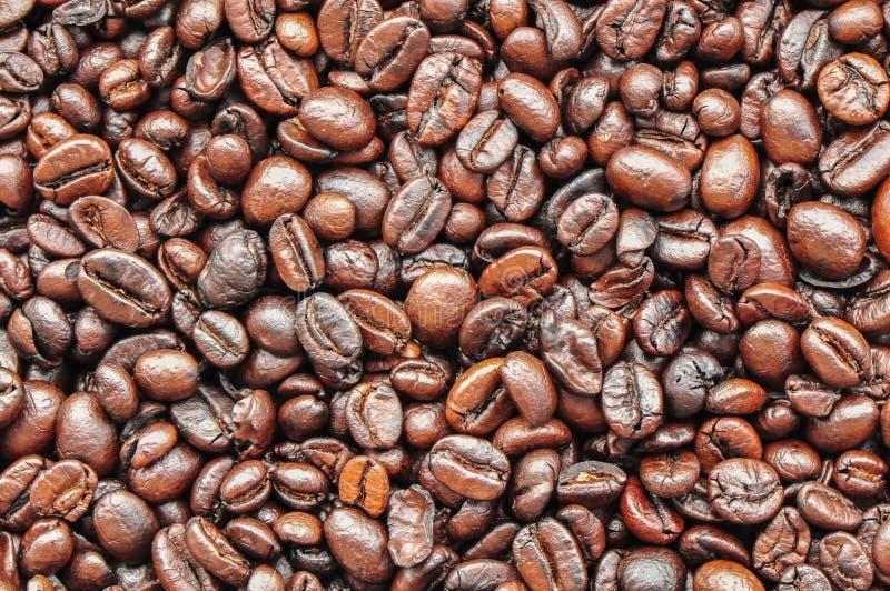 blisko fasolę kawa wystrzelona obraz royalty free