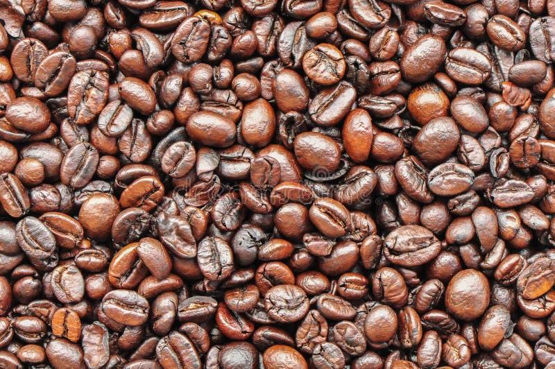 blisko fasolę kawa wystrzelona zdjęcia royalty free