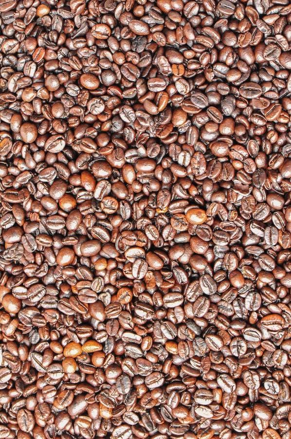 blisko fasolę kawa wystrzelona obrazy royalty free