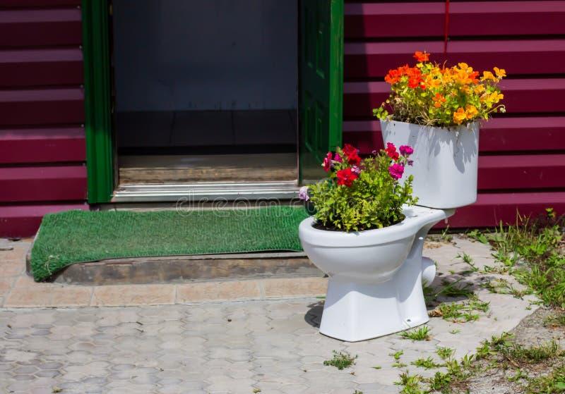 blisko kwiat łóżka Petersburgu święty Rosji, zdjęcia royalty free