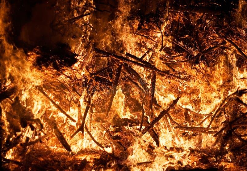 blisko ognia od lasu zdjęcia stock