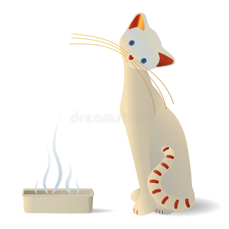 blisko starannego kot pudełkowata ściółka ilustracji