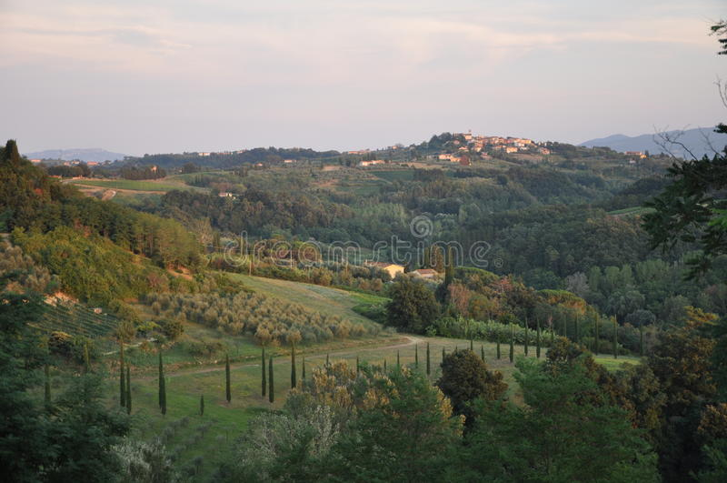 Blisko Terriccola chianti Tuscany zdjęcia stock