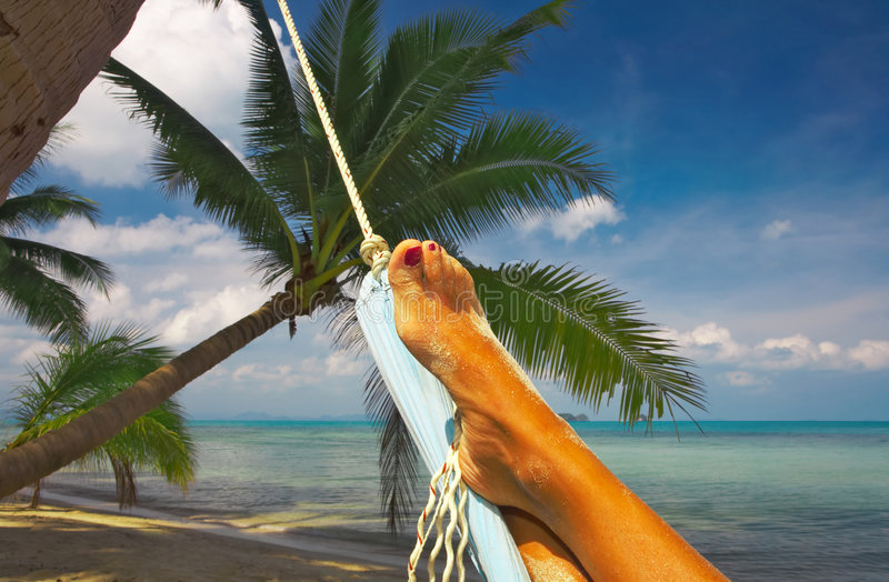 Download Bliss stock photo. Image of ocean, palm, cruise, idling - 2288302
