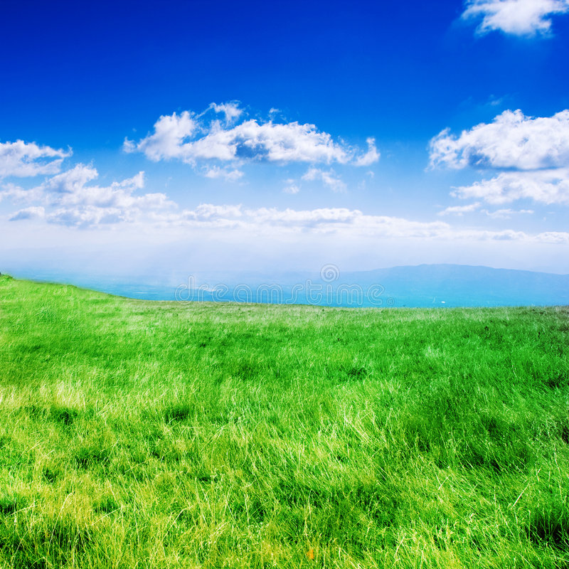 Bliss. Rolling grass hills under a dreamy sky royalty free stock photos