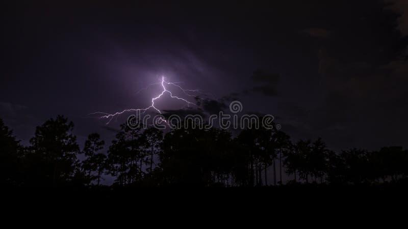 Blixtnattfotografi i södra Florida arkivbilder