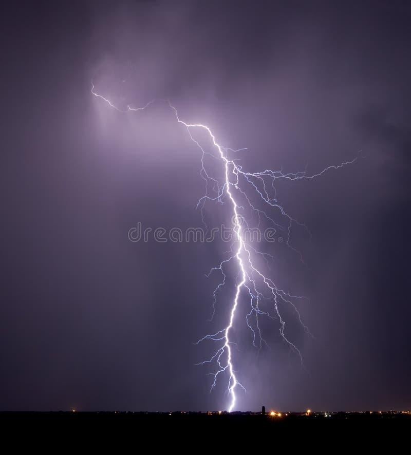 blixtpasserandeskallerorm arkivbilder