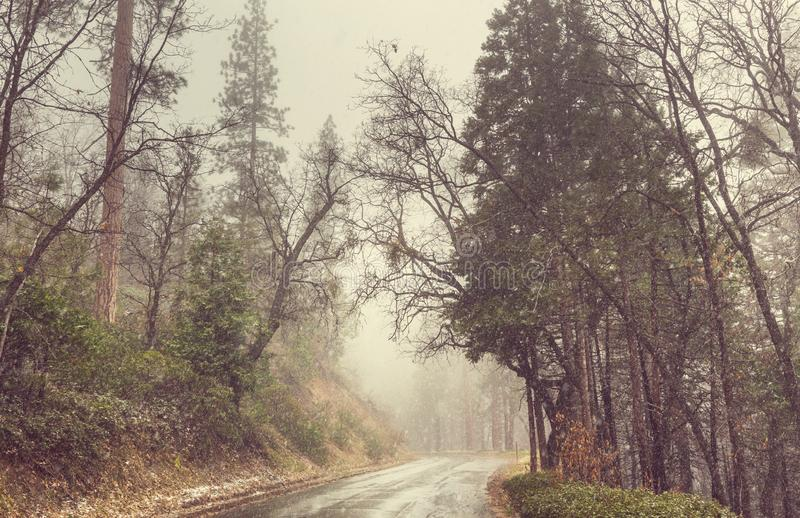 blizzard stock afbeeldingen
