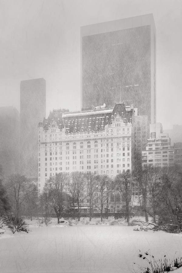 Blizzardklappen NYC - de Winteronweer in Central Park stock foto