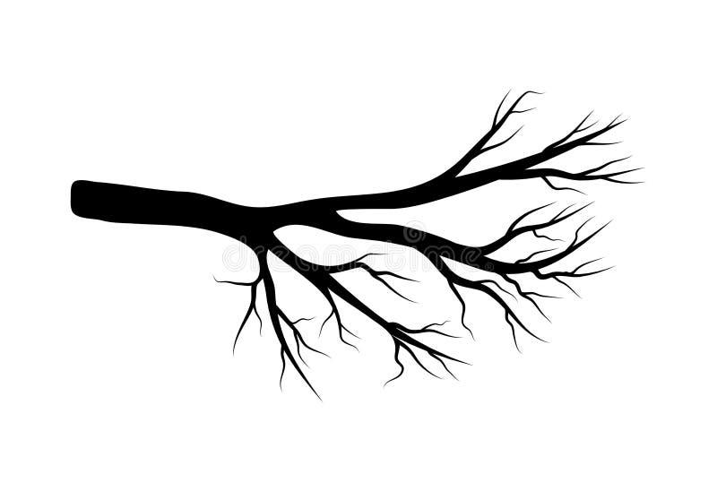 Bloßes Niederlassungsvektorsymbol-Ikonendesign Schöne Illustration ist vektor abbildung
