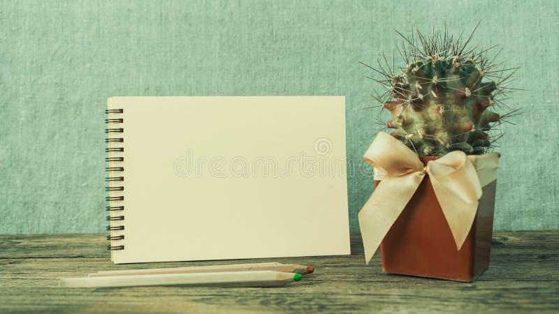 Bloc-notes vide blanc, carnet, crayons colorés en bois et vert images libres de droits