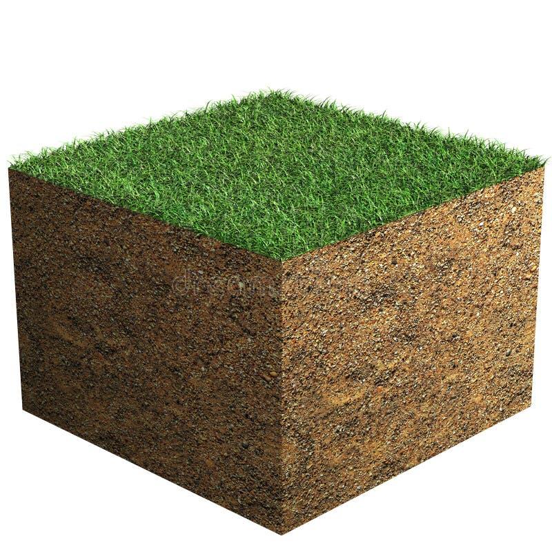 Blocchetto dell'erba fotografia stock libera da diritti