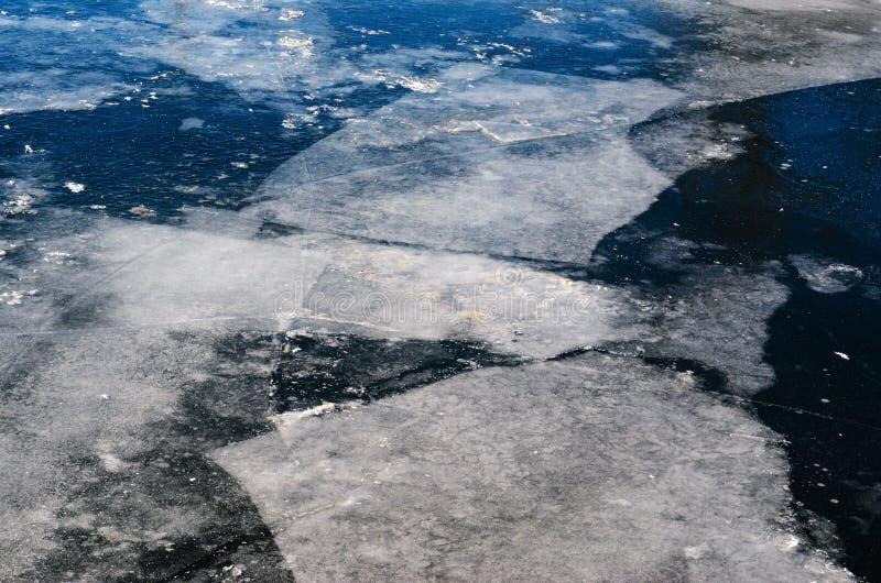 Blocchi di ghiaccio sullo stagno congelato fotografia stock libera da diritti