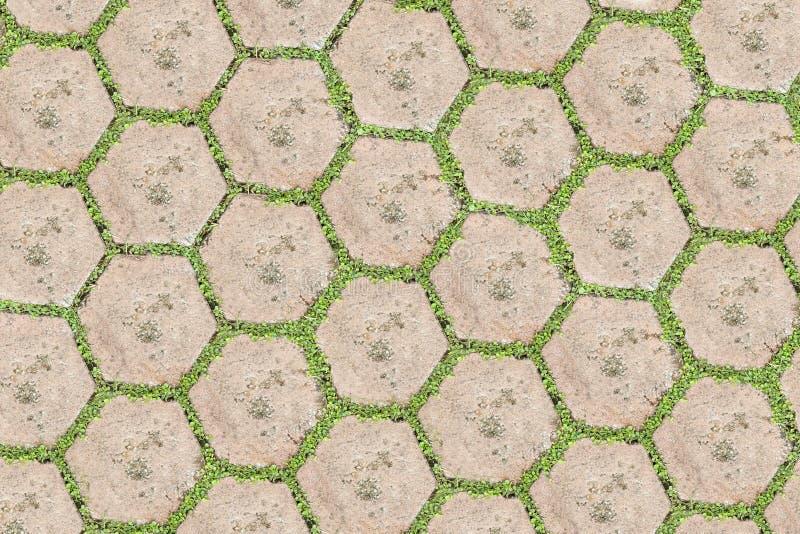 Blocco di pietra con erba. immagini stock