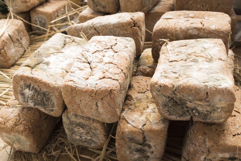 Blocco di soybeansMeju fermentato immagine stock libera da diritti