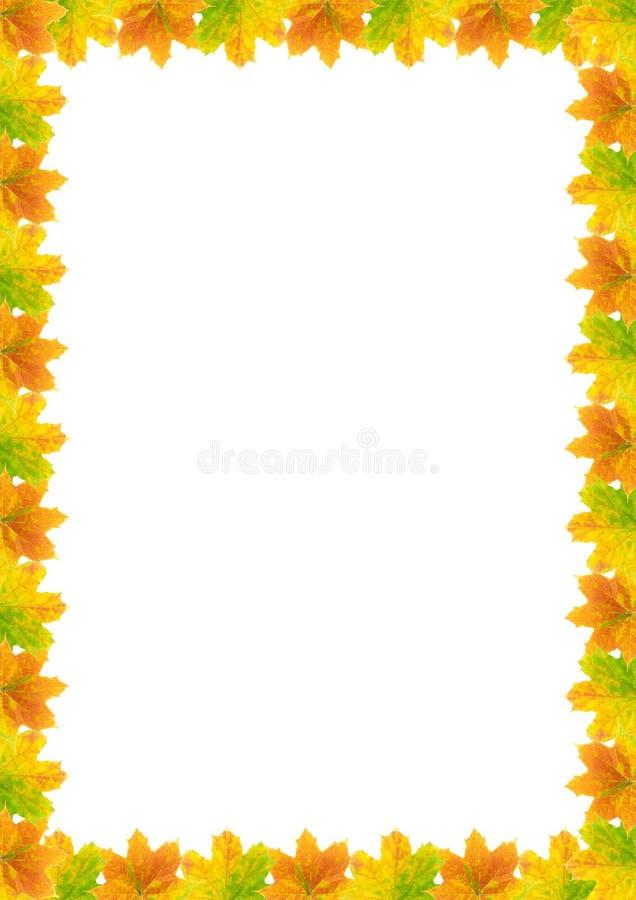 Blocco per grafici A4 del foglio di autunno immagine stock