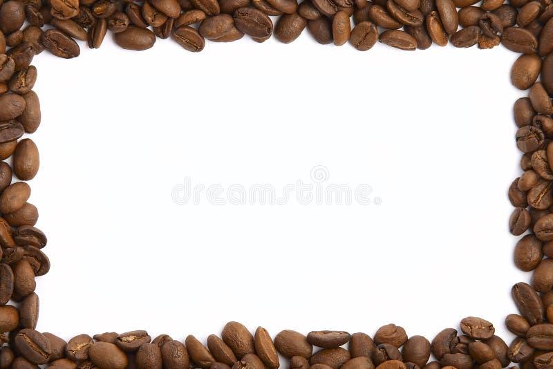 Blocco per grafici del chicco di caffè immagine stock libera da diritti