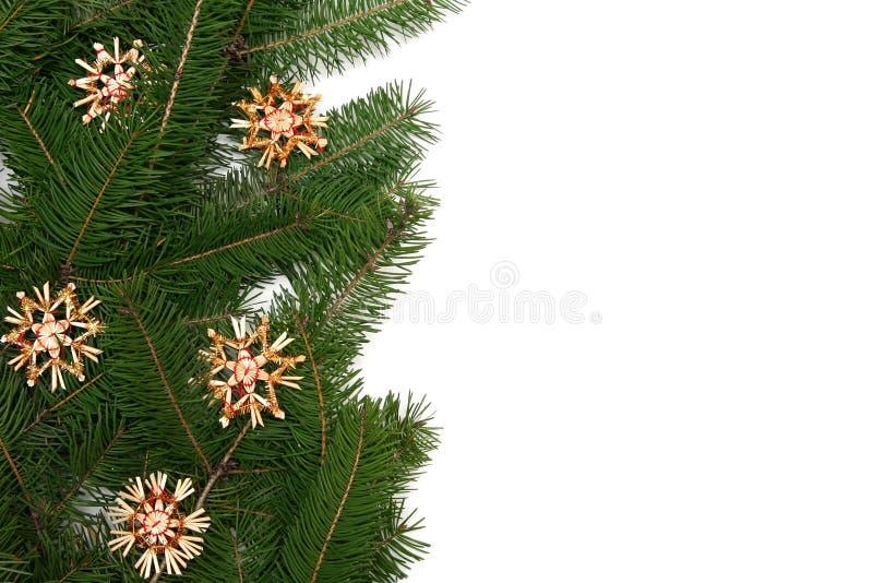 Blocco per grafici dell'albero di Natale immagine stock