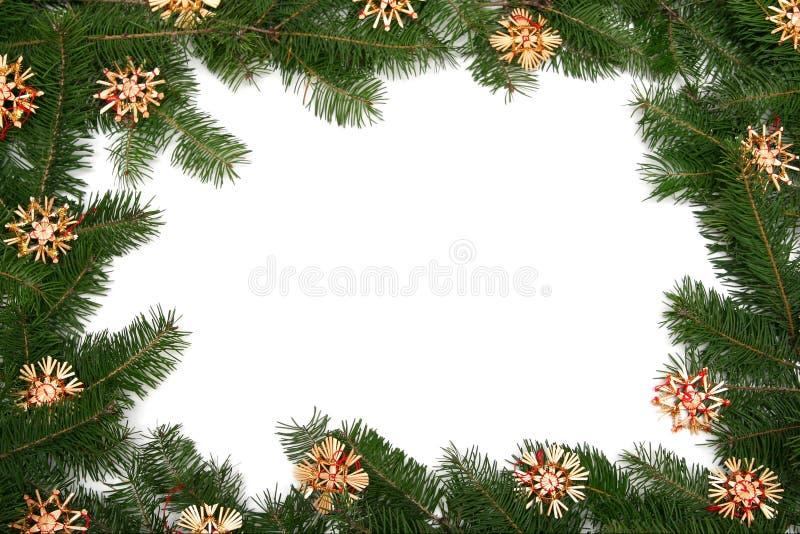 Blocco per grafici dell'albero di Natale fotografia stock libera da diritti