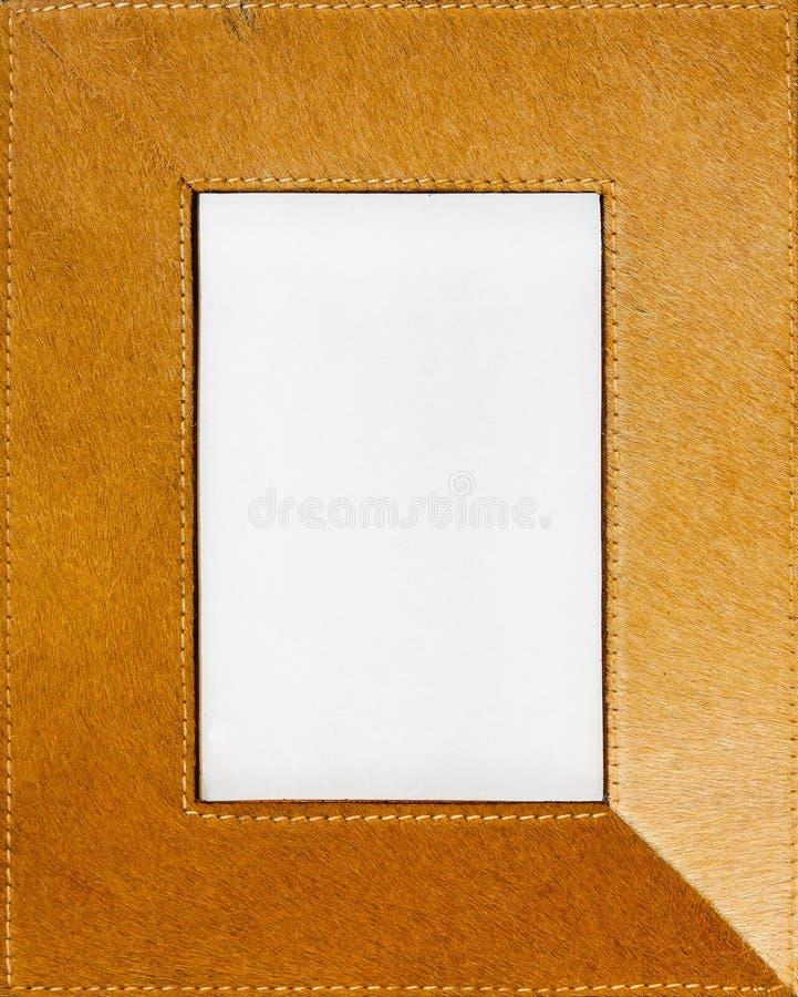 Blocco per grafici della pelliccia immagine stock libera da diritti
