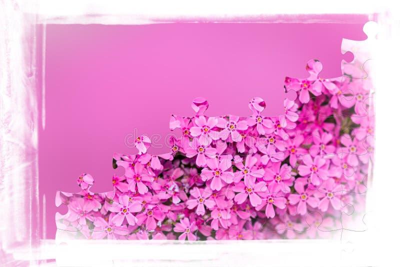 Blocco per grafici dentellare del fiore con il puzzle dei fiori fotografia stock libera da diritti
