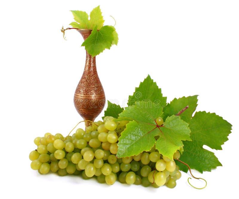 Block der reifen, grünen Trauben und des kupfernen Amphora. stockbild