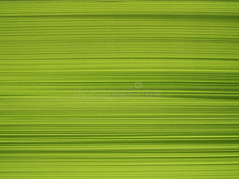Download Block of green paper stock photo. Image of book, page - 10951110