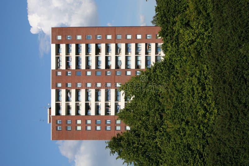 Block und Bäume lizenzfreie stockfotografie