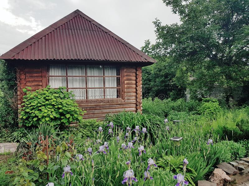 Blockhaus im Häuschenblumengarten stockfoto